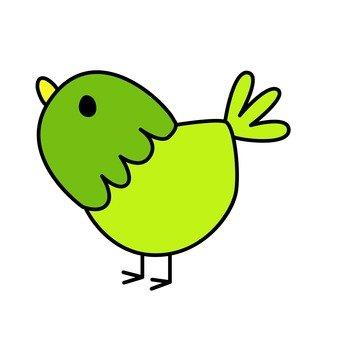Green bird 16