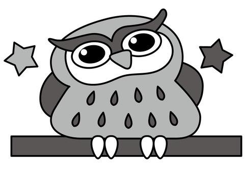 Owl 2c
