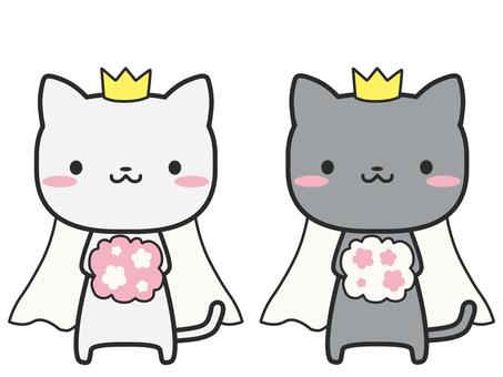 고양이 결혼 동성