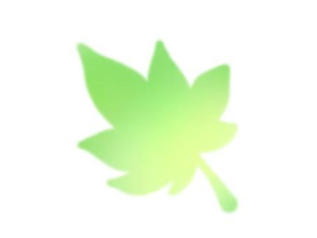 Maple 2 (green)