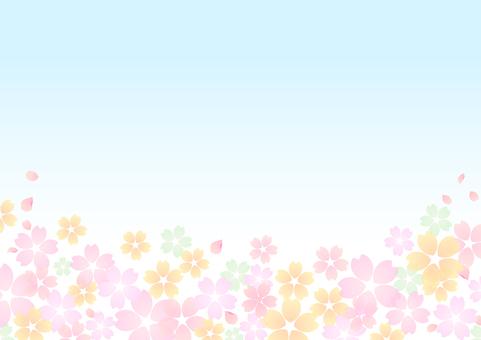벚꽃 소재 350