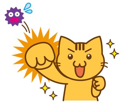 Virus fight cat