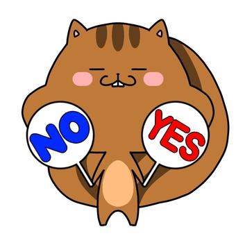 Squirrel YES NO