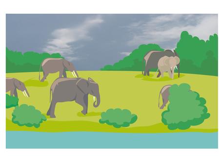 elephant_ elephant