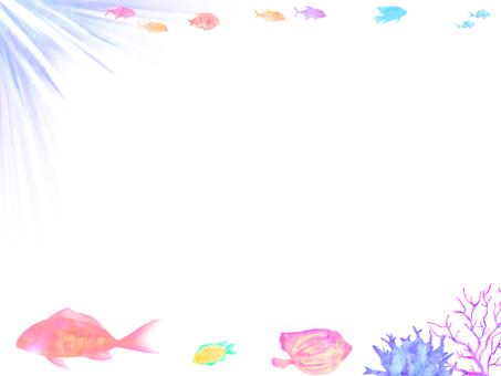 Sea fish frame 2