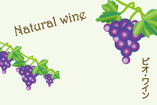 Promotion of vin and wine of grapes and nature POP