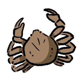 Crab ③