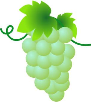 Grape-2
