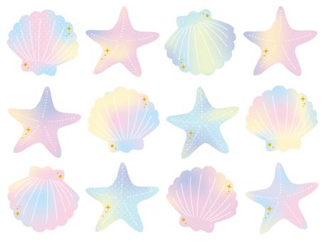 Seashell watercolor 2