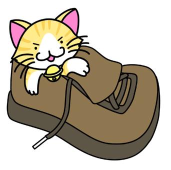 Shoe Cat (Faces)