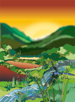 Satoyama landscape