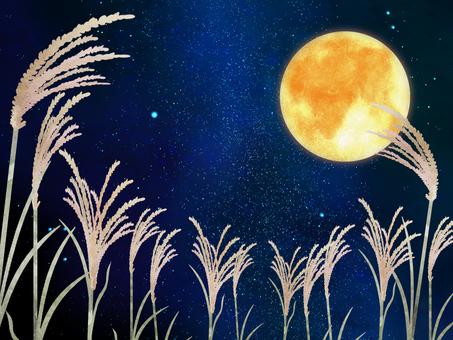 Moonlight background illustration ③