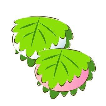 Kashiwa mochi