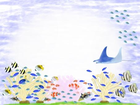 Okinawa sea fish 2 message card
