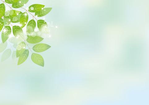 Glittering leaves & sky 5