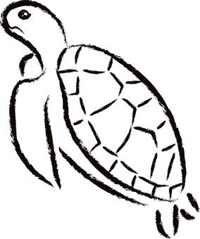바다 거북 01- 검정