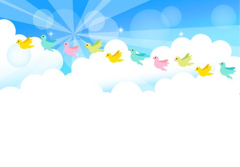 Empty bird background