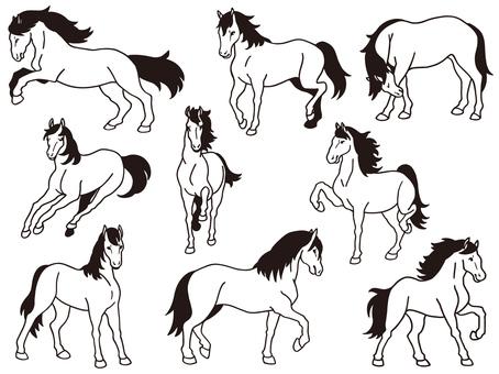 Horse illustration set - line drawing