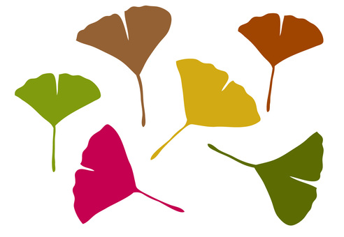Autumn Leaves Material Ginkgo