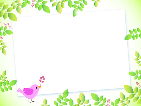 Fresh green and small bird board, pink