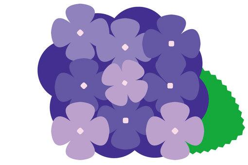 繡球花2-4