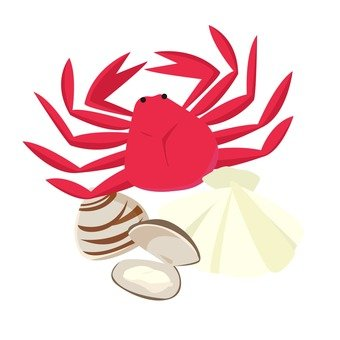 Shells and crabs