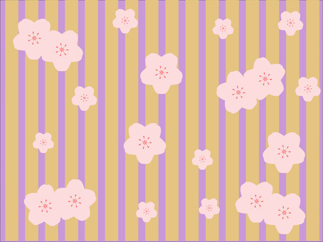 有很多櫻花。春天的春天