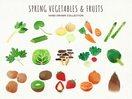 Hand-drawn illustration of vegetables and fruits (spring)