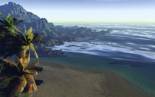 Tropical sandy beach 3