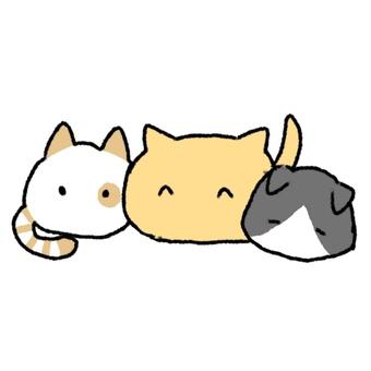 세 마리의 고양이