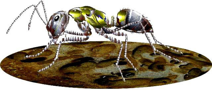 Metal robot ant (ant)