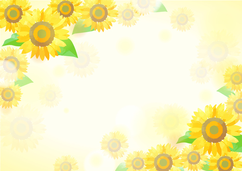 Pastel color sunflower background 1