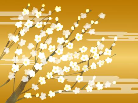 White plum blossoms gold