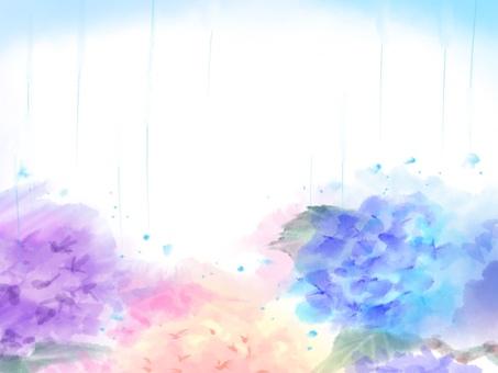 紫陽花 ポストカード
