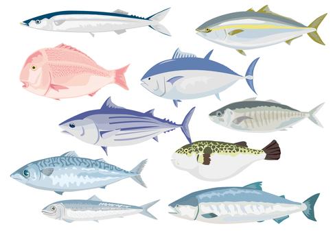 Various sets of fish