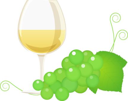 Wine _ white wine and Muscat