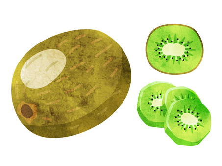 Food _ fruit _ kiwi _ no wire