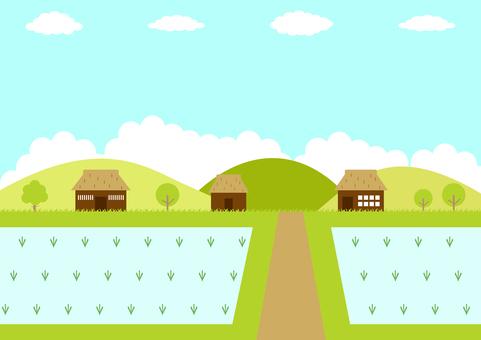 Old house rice field landscape
