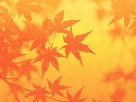 Japanese paper style maple