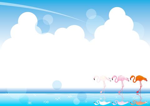 Flamingos _ background 01