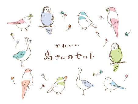 귀여운 새씨 세트