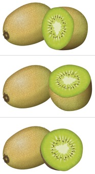 Kiwi (light color) / fruit