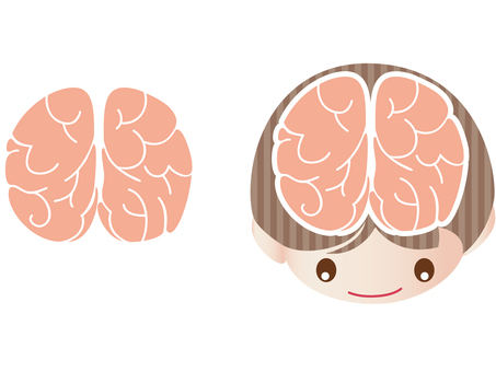 Brain and facial expression