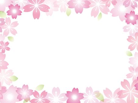 Cherry blossom image 030