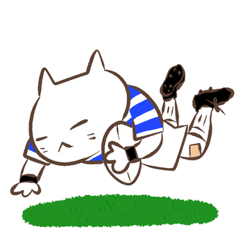 Rugby / cat to try