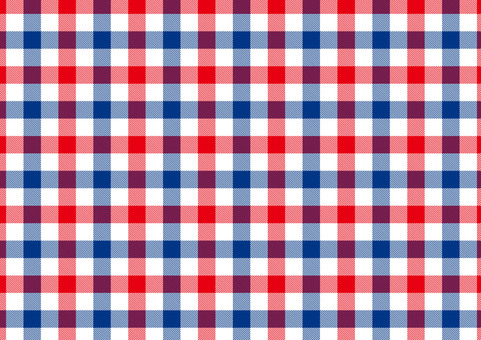 Gingham check of red and blue