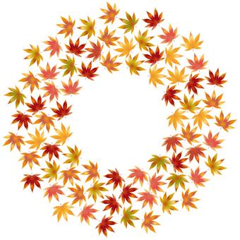 Autumn leaves 109