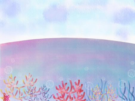 오키나와의 아름다운 산호초