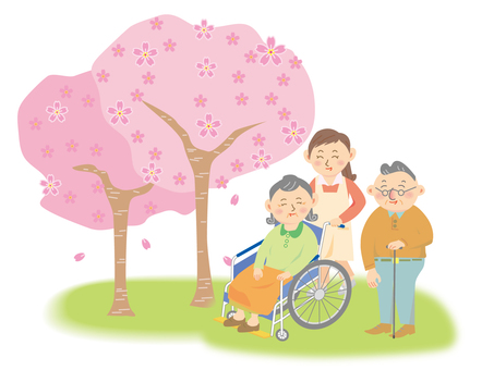 Cherry blossoms and elderly care