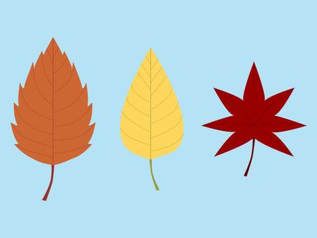 3 fallen leaves of light blue background